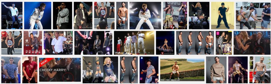 """Screen shot of Google search for """"male singers grabbing their crotch"""". Please note the shots included of females grabbing them, too. Want to bet they are all Tolerant Liberals who hate Trump?"""