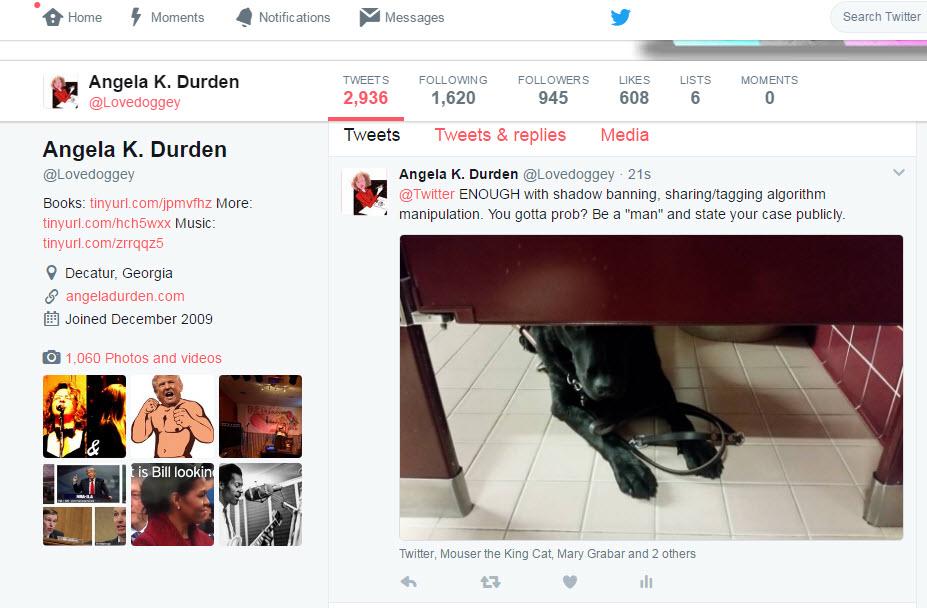 twitter shadow-banning update